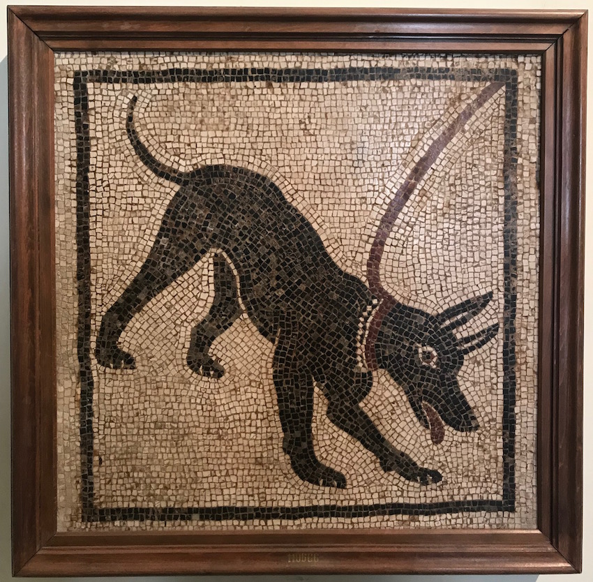 Beware of the Dog Mosaic